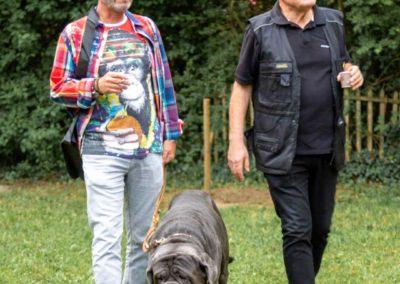 SwissBoxer-DogShow-2019-©BoxerClubGVA-(10)