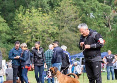 SwissBoxer-DogShow-2019-©BoxerClubGVA-(125)
