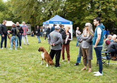 SwissBoxer-DogShow-2019-©BoxerClubGVA-(128)