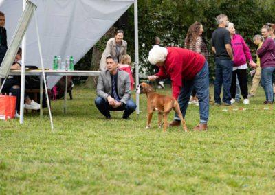 SwissBoxer-DogShow-2019-©BoxerClubGVA-(131)