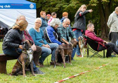 SwissBoxer-DogShow-2019-©BoxerClubGVA-(132)