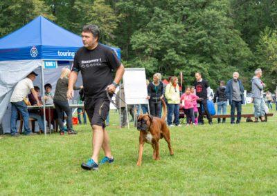 SwissBoxer-DogShow-2019-©BoxerClubGVA-(146)
