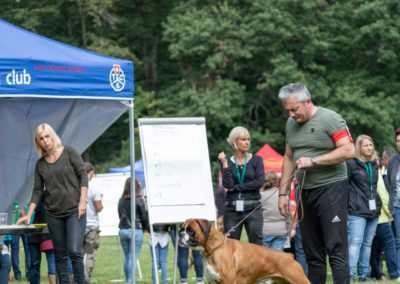 SwissBoxer-DogShow-2019-©BoxerClubGVA-(151)