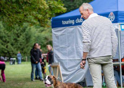SwissBoxer-DogShow-2019-©BoxerClubGVA-(159)