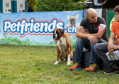 SwissBoxer-DogShow-2019-©BoxerClubGVA-(165)