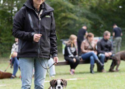 SwissBoxer-DogShow-2019-©BoxerClubGVA-(166)