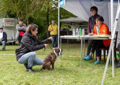 SwissBoxer-DogShow-2019-©BoxerClubGVA-(173)