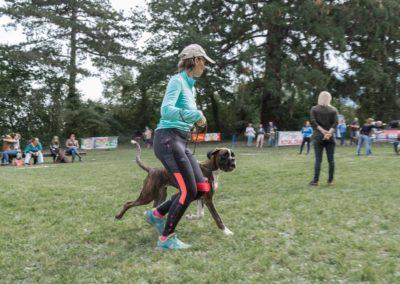 SwissBoxer-DogShow-2019-©BoxerClubGVA-(185)