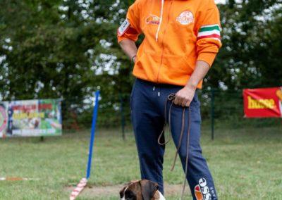SwissBoxer-DogShow-2019-©BoxerClubGVA-(215)