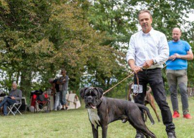 SwissBoxer-DogShow-2019-©BoxerClubGVA-(232)