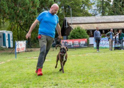 SwissBoxer-DogShow-2019-©BoxerClubGVA-(236)