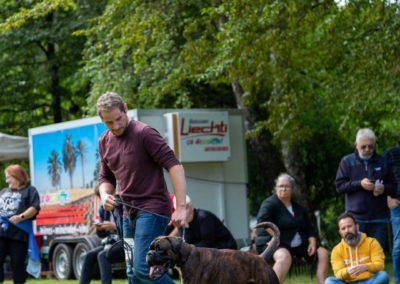 SwissBoxer-DogShow-2019-©BoxerClubGVA-(238)
