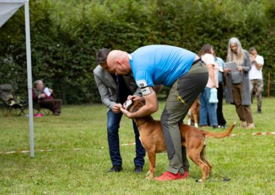 SwissBoxer-DogShow-2019-©BoxerClubGVA-(243)