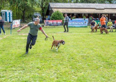 SwissBoxer-DogShow-2019-©BoxerClubGVA-(258)