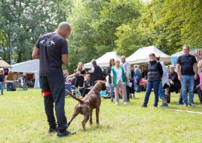 SwissBoxer-DogShow-2019-©BoxerClubGVA-(263)