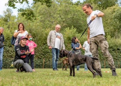 SwissBoxer-DogShow-2019-©BoxerClubGVA-(283)