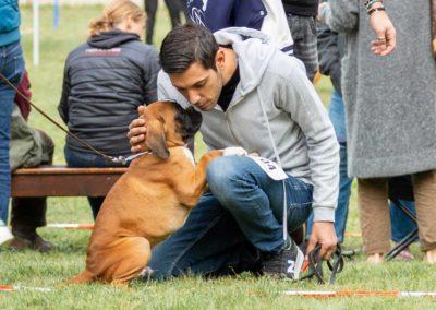 SwissBoxer-DogShow-2019-©BoxerClubGVA-(29)