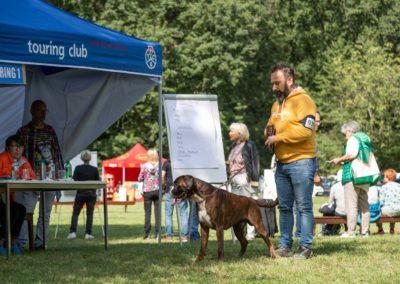 SwissBoxer-DogShow-2019-©BoxerClubGVA-(294)