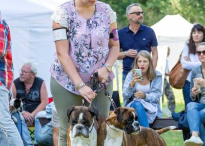 SwissBoxer-DogShow-2019-©BoxerClubGVA-(355)