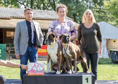 SwissBoxer-DogShow-2019-©BoxerClubGVA-(364)