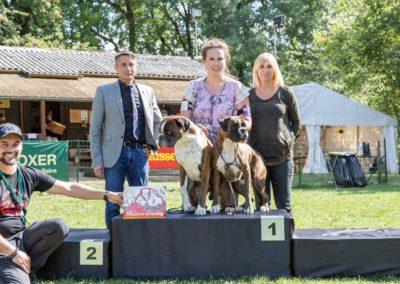 SwissBoxer-DogShow-2019-©BoxerClubGVA-(365)