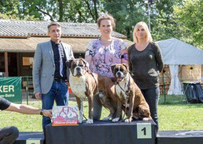 SwissBoxer-DogShow-2019-©BoxerClubGVA-(366)