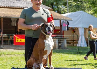 SwissBoxer-DogShow-2019-©BoxerClubGVA-(378)