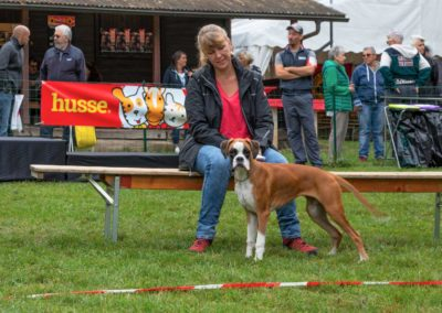 SwissBoxer-DogShow-2019-©BoxerClubGVA-(38)
