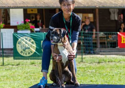 SwissBoxer-DogShow-2019-©BoxerClubGVA-(382)