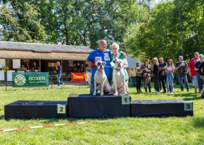 SwissBoxer-DogShow-2019-©BoxerClubGVA-(384)