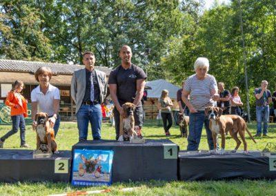 SwissBoxer-DogShow-2019-©BoxerClubGVA-(391)