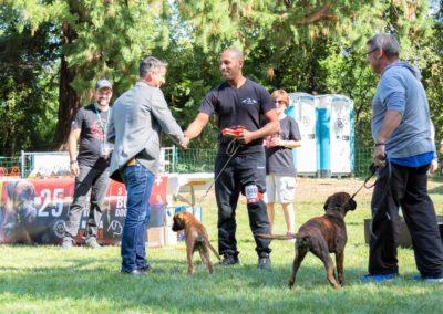 SwissBoxer-DogShow-2019-©BoxerClubGVA-(397)