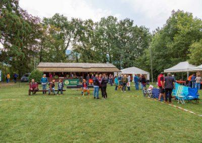 SwissBoxer-DogShow-2019-©BoxerClubGVA-(4)