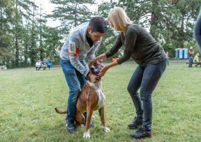 SwissBoxer-DogShow-2019-©BoxerClubGVA-(40)