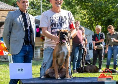 SwissBoxer-DogShow-2019-©BoxerClubGVA-(413)