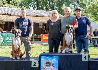 SwissBoxer-DogShow-2019-©BoxerClubGVA-(418)