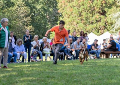 SwissBoxer-DogShow-2019-©BoxerClubGVA-(421)