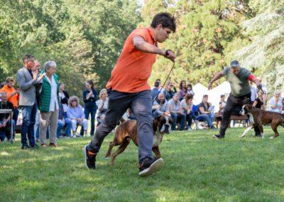 SwissBoxer-DogShow-2019-©BoxerClubGVA-(422)