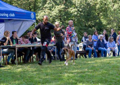 SwissBoxer-DogShow-2019-©BoxerClubGVA-(425)
