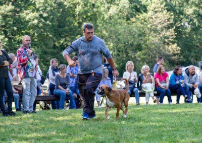 SwissBoxer-DogShow-2019-©BoxerClubGVA-(426)