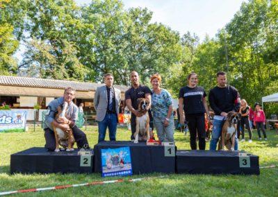 SwissBoxer-DogShow-2019-©BoxerClubGVA-(428)