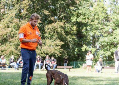 SwissBoxer-DogShow-2019-©BoxerClubGVA-(429)