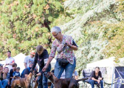 SwissBoxer-DogShow-2019-©BoxerClubGVA-(431)