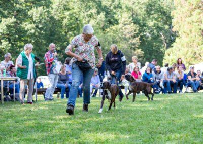 SwissBoxer-DogShow-2019-©BoxerClubGVA-(434)