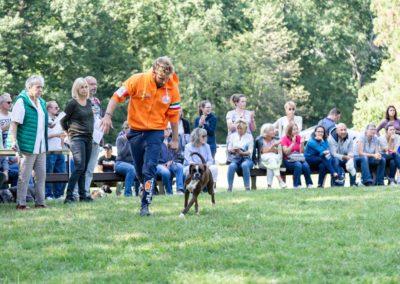 SwissBoxer-DogShow-2019-©BoxerClubGVA-(436)