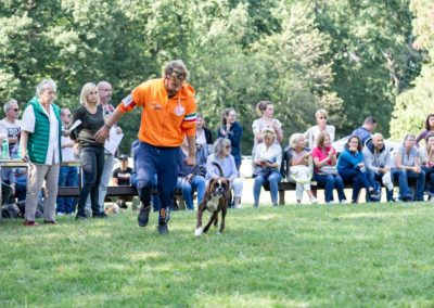 SwissBoxer-DogShow-2019-©BoxerClubGVA-(437)