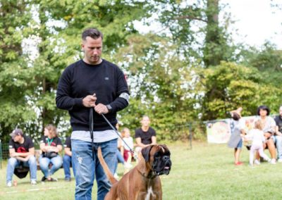 SwissBoxer-DogShow-2019-©BoxerClubGVA-(441)