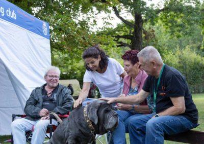 SwissBoxer-DogShow-2019-©BoxerClubGVA-(459)