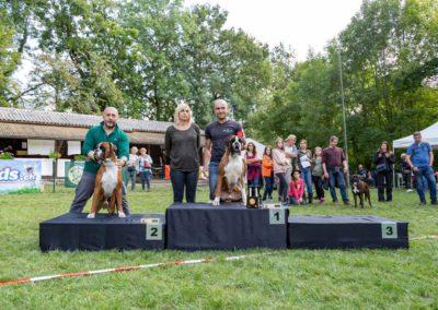 SwissBoxer-DogShow-2019-©BoxerClubGVA-(460)