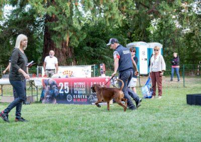 SwissBoxer-DogShow-2019-©BoxerClubGVA-(467)